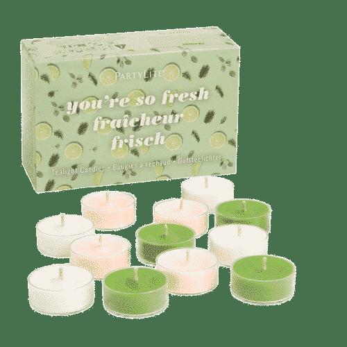 Teelichtbox Frisch PartyLite